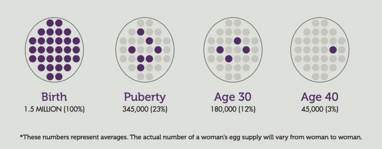 Average egg count by age