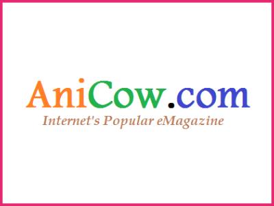 anicow image