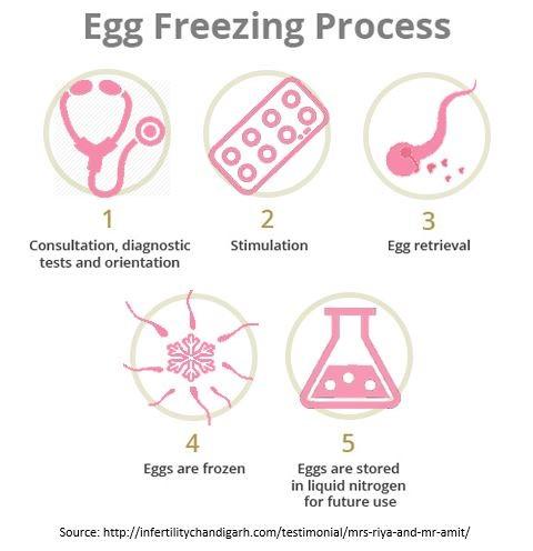 egg-freezing-treatment